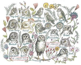 Owls, flowers, Nature inspired, Nursery Artwork, Birding- Owls Art Print