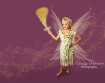 Wind or Fast Flying Fairy Photography Overlay and Digital Background Set