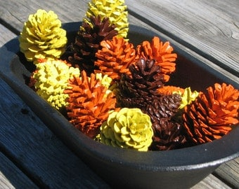 Autumn colored painted pinecones - set of 18 - orange brown and yellow for bowl fillers, wreath making, fall centerpieces or craft supplies