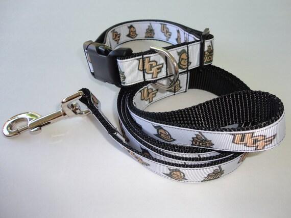 Ucf Knights Dog Collar