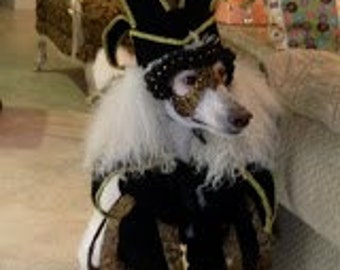 Venetian Jester Dog Costume