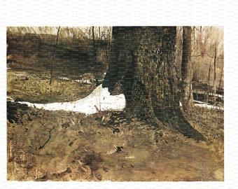 "Andrew Wyeth Book Print. ""Snow Shoe"". 1968."