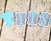 It's Twins Baby Shower Banner, Baby Boy Banners