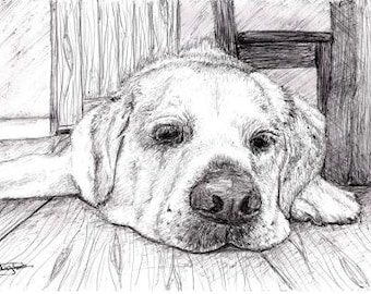 Custom Pet Portrait in Pen A4