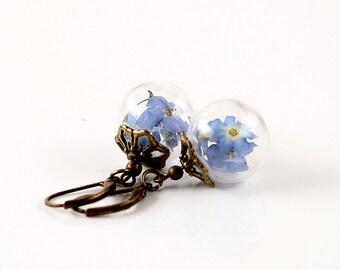 True Forget-me-not flower earrings E055