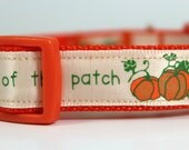 Pick of the Patch Dog Collar