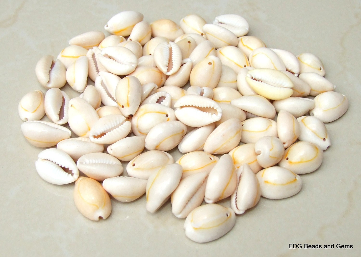 how to clean cowrie shells