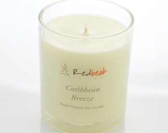 Hand Poured Soy Candles - Caribbean Breeze