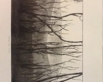 Unique hand printed dry point and sandblast print 'After the fire'