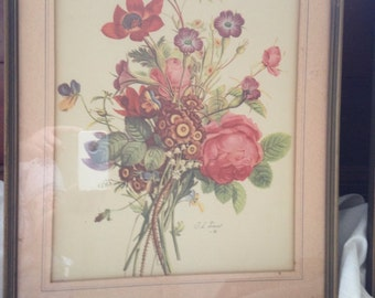Pair of botanical, floral prints