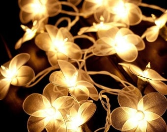 20 White Flower String Fairy Lights Decor Wedding  Patio Party Garden Spa Bedroom and Holiday lighting Indoor Outdoor