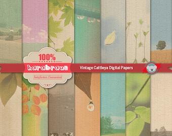 Vintage Cattleya digital papers, digital images, printables, patterns, backgrounds, digital clipart [SA4-009]
