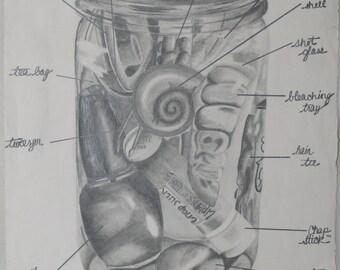 Dresser Sampler Jar (graphite on paper)