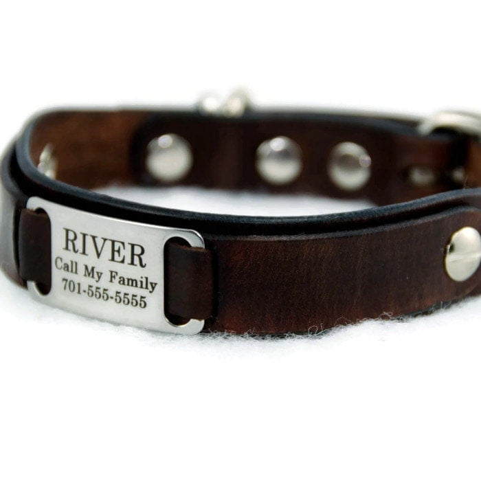 Small Leather Name Plate Dog Collar Personalized by PupPanache