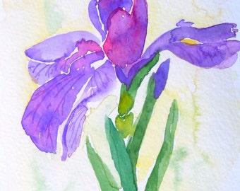 Siberian Iris Watercolor Notecard
