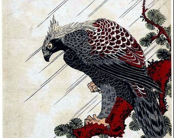 Eagle on a pine branch in the rain Isoda Koryusai Japanese woodblock print reproduction JP2-133
