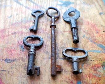 Rusty Pickins Antique Skeleton Key Set - Heart Keys