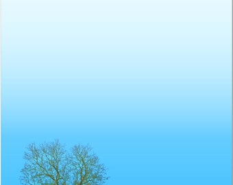 Dry Erase Fridge Notes Magnet - Colorful Image of a Lone Tree against a Stunning Blue Sky. todo recipes lists #3325
