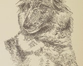 Belgian Tervuren dog art portrait drawing from words. Your dog's name added into art FREE. Great gift. Signed Kline 11X17 Lithograph 54/500.