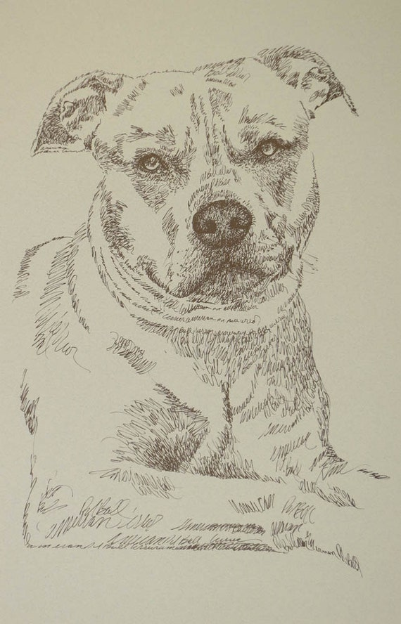 American Pit Bull Terrier dog art portrait drawing from words. Dog's name added into art FREE. Great gift. Signed Kline 11X17 Lithograph 133
