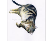 """cat drawing  """"A Grey Tabby Lying On Its Side"""" kid room decor wall art cat lover gift  (103)"""
