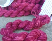 Mary Reed Mini Skeins Raspberry Sparkle Hand Painted Pink Sock Yarn 28 Yards Superwash Merino Nylon