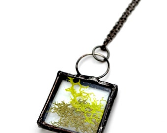 Real Moss Necklace, Terrarium Pendant, Forest Floor, Nature Lover Jewelry, Bevel Pendant,   (2078)