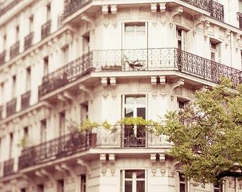 Paris photography, Paris photo, Paris Art,Sanguine Roots