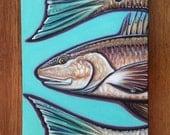"Original Redfish Oil painting""by Carin Vaughn 12"" x 24"""