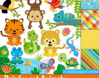 Rainforest clip art - Clipart and Digital paper set