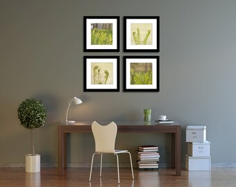 Nature Photography Set, Green Photograph Set, Fern Pictures, Office Decor, Square Photo Collection, Small Art Prints