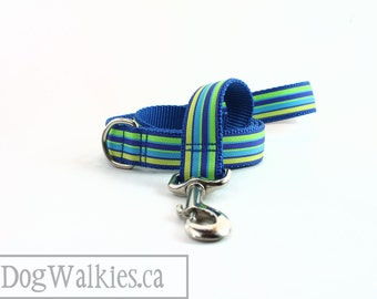 "Matching Dog Leash - Striped - Zig Zag - Chevron - Squares - Fall Animals - Colorful - 1"" Wide - 25mm Wide - Matching Collar and Leash Set"