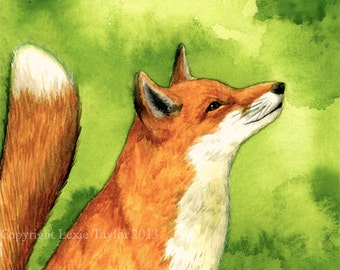 Red fox (Vulpes vulpes) watercolor painting