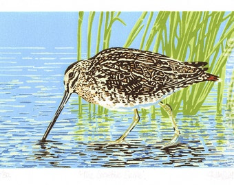 Common Snipe - wading bird - Limited Edition Linocut Reduction Print - Contemporary Fine Art