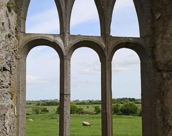 Ireland Photography, Irish Art Print, Window photography, Irish Landscape, Home Decor, Nature Print, Spring Decor - A Window's view