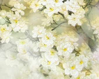 Delicate Spring Photography Backdrop
