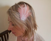Pink and White Birdcage Veil