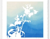 Limited edition botanical print with hand torn edges - Lenten Rose No. 1