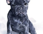 Custom Dog Portrait 8x10 watercolor painting