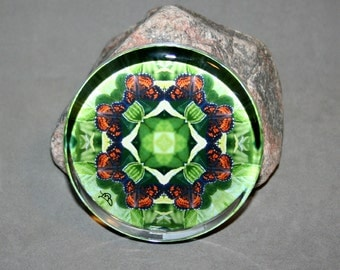 Butterfly Glass Paperweight Boho Chic Mandala New Age Sacred Geometry Hippie Kaleidoscope Unique Boss Gift Teacher Gift Wing and a Prayer