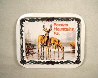 Poconos Souvenir Pocono Mountains Tray Change Snack Buck