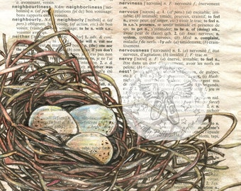 PRINT:  nid d'oiseaux (French Nest) Mixed Media Drawing on French/English Dictionary