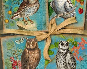 Digital Collage Sheet VINTAGE OWLS 3.8x3.8 inch size Images Printable download for Coasters, Greeting cards, Scrapbook, Gift tags Art Cult