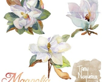 Magnolia clip art images watercolor hand painted PNG transparent background and JPG white flower Instant Download for blog cards invitations
