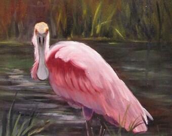 Spoonbill Roseate  bird,oil painting,canvas,animal,feathers,Barbara Haviland