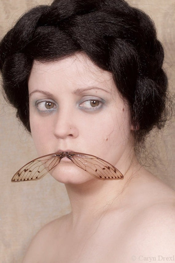 The Last Song You'll Ever Sing 2 - FREE SHIPPING Surreal Photo Print Creepy Portrait Poster Wall Art Bug Insect Cicada Wings Mouth Cream