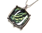 Little Square Sunset Moth Wing Pendant - Real Sunset Moth Wing in Glass Necklace on Sterling Silver Chain