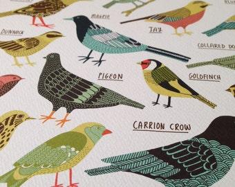 Garden birds of Britain print