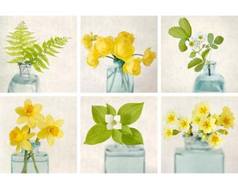 Botanical Print Set, Flower Photography, Art Prints, Green, Yellow, Aqua, Teal, Floral Print Set, Flower Photo Set, Fine Art Photographs