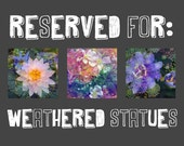 "RESERVED for ""weathered statues"" !  Custom Listing"